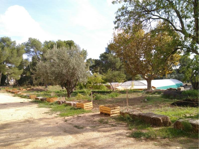 Retour sur les journées des agricultures urbaines en méditerranée